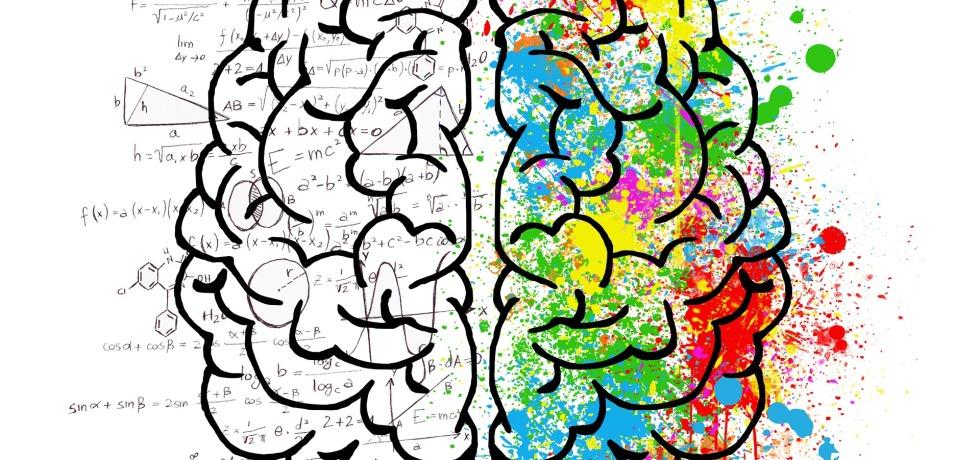 Semana mundial del cerebro 2019