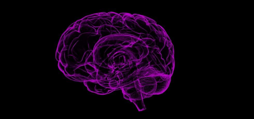 ¿El Parkinson inicia en los intestinos?