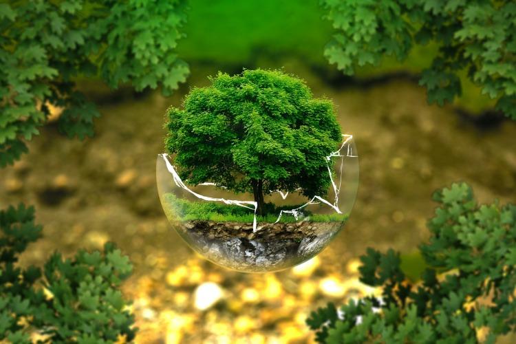Día internacional de la madre Tierra: educación y cambio climático