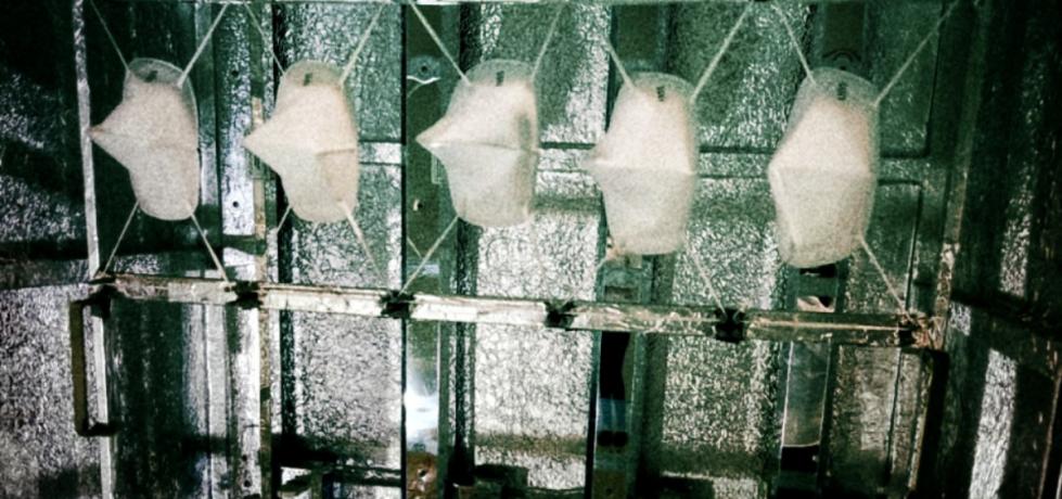 La luz al final de la cabina: radiación UV-C vs COVID-19